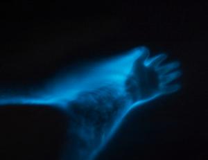 Bioluminescence Bay Crystal Charters Grand Cayman
