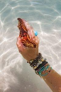Starfish handshake